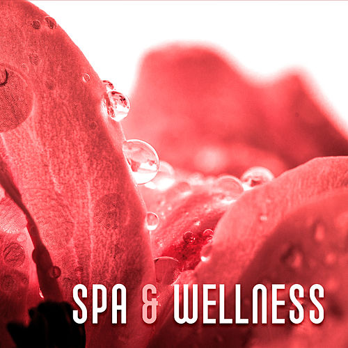 Spa & Wellness – Soft Music to Calm Down, Healing Spa, Deep Massage, Harmony, Silence, Soothing Sounds, Stress Relief, Spa Music de ZEN
