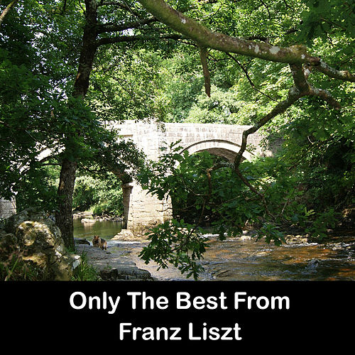Only The Best From Franz Liszt by Franz Liszt