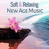 Soft & Relaxing New Age Music – Calming Waves, Inner Peace, Silent Soul, Peaceful Music, Sounds to Rest by Relaxing Sounds of Nature