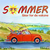 Sommer for store by Various Artists