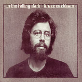 In The Falling Dark by Bruce Cockburn