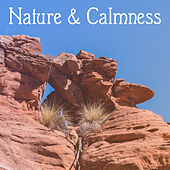 Nature & Calmness – Peaceful Music, Deep Relief, Total Calm, Relaxation Sounds, Stress Free, Pure Mind, Nature Sounds for Rest by Native American Flute