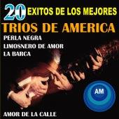 20 Éxitos de los Mejores Tríos de América by Various Artists