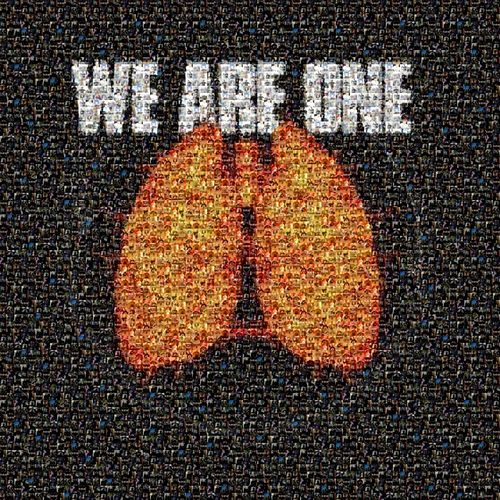 Projet mucoviscidose (We Are One) by Various Artists