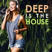 Deep Is the House by Various Artists