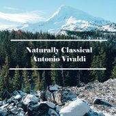 Naturally Classical Antonio Vivaldi by Anastasi
