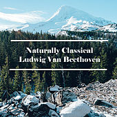 Naturally Classical Ludwig Van Beethoven by Ludwig van Beethoven