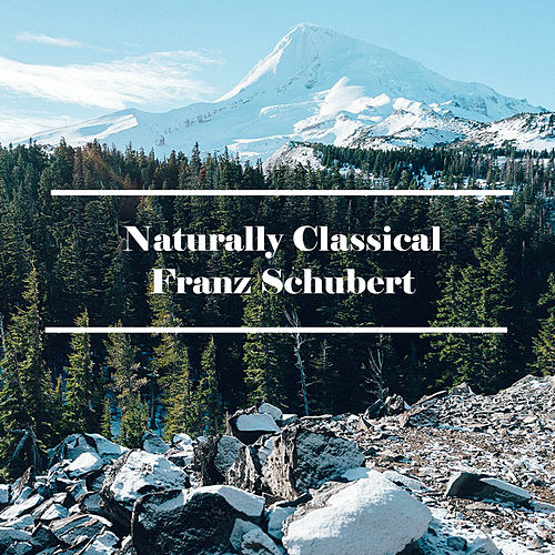 Play & Download Naturally Classical Franz Schubert by Franz Schubert | Napster