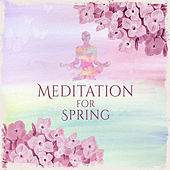 Meditation for Spring – New Age, Natural Sounds, Music for Yoga Meditation, Pilates, Deep Rest, Pure Relaxation by Yoga Music