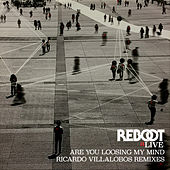 Are You Loosing My Mind (Ricardo Villalobos Remixes) by Reboot
