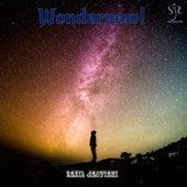 Wondernow! by Sahil Jagtiani