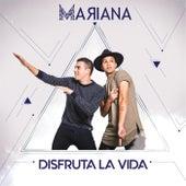 Disfruta la Vida by Mariana
