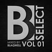 Brobot Select: Vol. 1 (Mixed By Blaqwell) by Various Artists