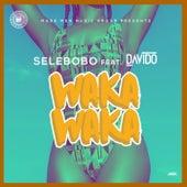Waka Waka de Selebobo