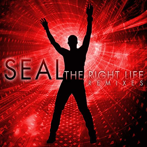 The Right Life - The Remixes by Seal