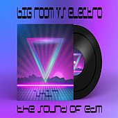 Big Room Vs. Electro 2K17 (The Sound of EDM) by Various Artists
