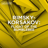 Rimsky-Korsakov: Flight of the Bumblebee by Various Artists