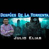 Despues d ela tormenta by Julio Elias