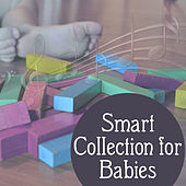 Smart Collection for Babies – Classical Music for Newborn & Older Children, Stimulate to Development,  Einstein Effect de First Baby Classical Collection