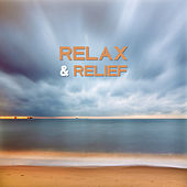 Relax & Relief – Soft Nature Sounds for Relaxation, Music to Calm Down, Instrumental Songs to Rest, Pure Waves, Singing Birds, Zen by Deep Sleep Relaxation