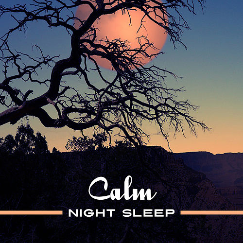 Play & Download Calm Night Sleep – Music for Night Relaxation, Sleep Well, Inner Calmness, Sounds to Rest by Ambient Music Therapy | Napster