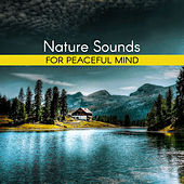 Nature Sounds for Peaceful Mind – Inner Calmness, Harmony Waves, Water Sounds to Relax, New Age Music by Nature Sounds Artists