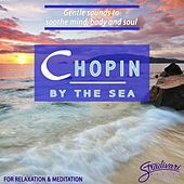 Chopin by the Sea by Paul Posnak