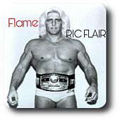 Ric Flair by Flame