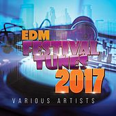 EDM Festival Tunes 2017 by Various Artists
