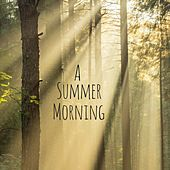 A Summer Morning by Nature Sounds