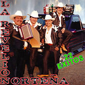 22 Exitos by La Revelion Norteña