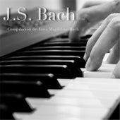 J.S. Bach Et al Compilacion de Anna Magdalena Bach by Roberto Reyes