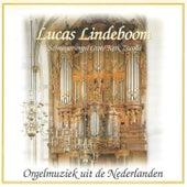Orgelmuziek uit de Nederlanden by Lucas  Lindboom
