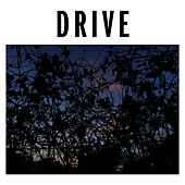 Drive (3/4s) by Brutus