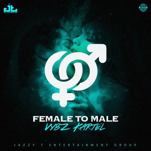 Female to Male von VYBZ Kartel