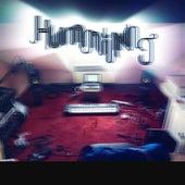 Humming 2 by Francisco Manzano García