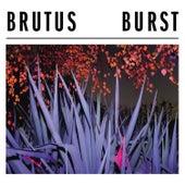 Burst by Brutus