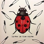 Love Is the Cure by Joey