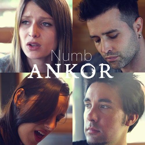 Numb de Ankor