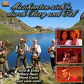 Musikanten zieh'n durch Berg und Tal by Various Artists