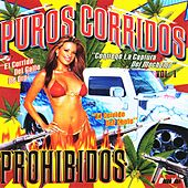 Puros Corridos Prohibidos Vol.1 by Various Artists