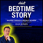 Adult Bedtime Story: Walking Through a Moonlit Meadow by Dan Jones