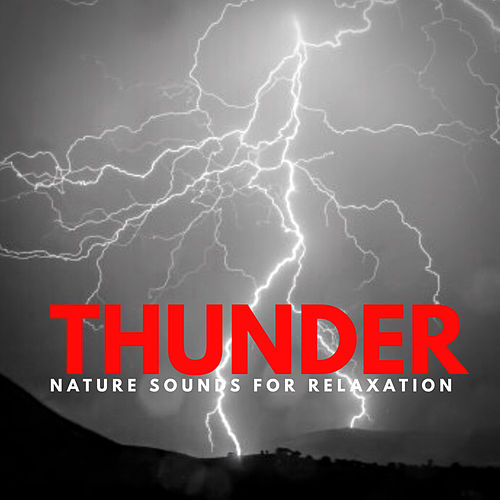 Thunder - The Healing Sounds Of Mother Nature by Nature Sounds (1)