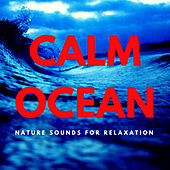 Calm Ocean - The Sounds Of Nature For Deep Relaxation by Nature Sounds (1)