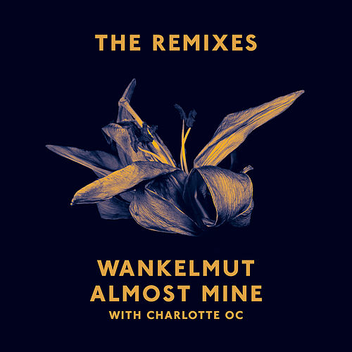 Almost Mine (The Remixes) by Wankelmut