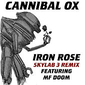 Play & Download Iron Rose (Skylab 3 Remix) by Cannibal Ox | Napster