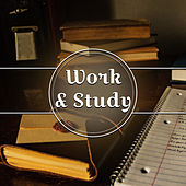 Play & Download Work & Study – Peaceful Music for Learning, Deep Focus, Better Concentration, Exam Music, Mozart, Beethoven by Easy Work Academy Studying Music Group | Napster