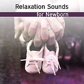 Play & Download Relaxation Sounds for Newborn – Baby Music, Calm Lullaby, Instrumental Music at Goodnight, Bedtime, Haydn by Sweet Baby Lullaby Dreamland Sleep Baby Sleep | Napster