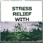 Stress Relief with Nature Sounds – Calming Waves, Easy Listening, New Age Nature, Soft Music by Sounds of Nature Relaxation