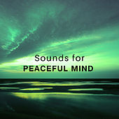 Sounds for Peaceful Mind – Easy Listening, Nature Waves, New Age Calmness, Soul Rest by Relax - Meditate - Sleep